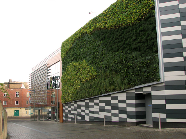 Advantages of vertical green wall